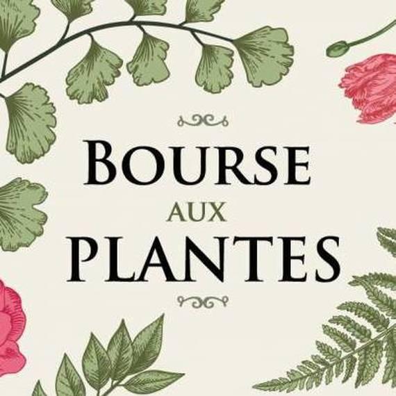 Bourse aux plantes 2019